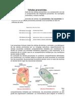 L02S1.3_cels_Procarioticas