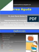 Diarrea Aguda-2007