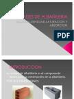 UNIDADES DE ALBAÑILERIA, densidad,saturacion