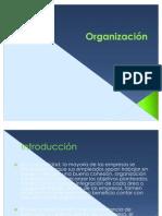 PROCESO_DE_organizacion