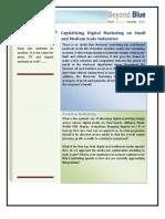 2010_BBA_capitalizing Digital Marketing on SME's..