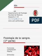diapositivas sangre