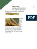 Elbow Friction Massage