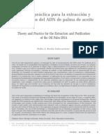 Teoria y Practica Para Extraccion y Purificacion Del ADN de Palma de Aceite