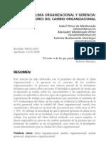Cima Organizacional y Gerencia