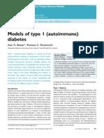 Models of T1D