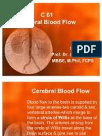 C 61 Cerebral Blood Flow