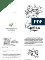 Ginger (Luya) Farming