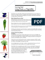 Preserving Food Drying Fruits and Vegetables