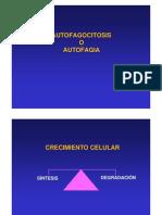 Autofagocitosis