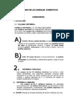 Anatomia de Los Animales Domes Ti Cos
