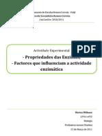 Relatório Biologia 12ºano - Actividade Enzimática