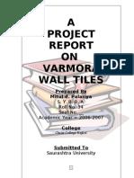 Varmora's Project Report