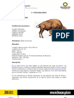 Plan de Manejo Del Bisonte Americano