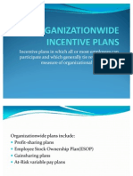 Organizationwide Incentive Plans
