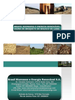 Brasil Biomassa - SPE - Briquette Bagaco de Cana 1