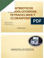 cos Aminoglucosidos Tetraciclinas y Cloranfenicol