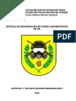 APOSTILA DE REINTEGRAÇÃO DE POSSE E DESOBSTRUÇÃO DE VIA