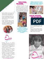 Folleto - Fundacion Denisse Bistre