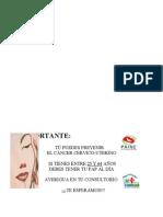 Afiche Pap