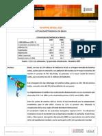 brasil_informe_pais_2010