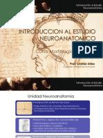 Generalidades de Neuroanatomía