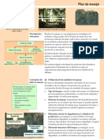 000004 Plan Manejo