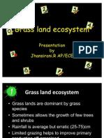 Grass Land & Desert Ecosystem by Jhansirani.R AP/ECE