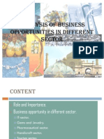 Analysis of Business Opportunities in Different Sector