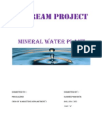 My Dream Project Mineral Water