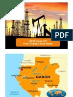 Países de la OPEP III Parte