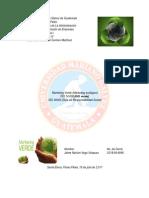 Marketing Verde, IsO 14000 y 26000