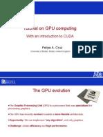 Cruz_gpuComputing09