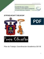 Plan de Trabajo_Coordinación Académica 2011Bf