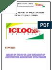 Igloo Report