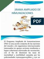 Pai-programa Ampliado de Inmunizaciones Definicion