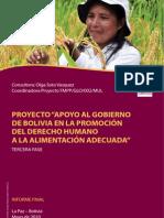 Bolivia Report 2010 Informe-final