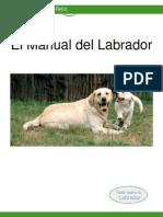 Manual Del Labrador
