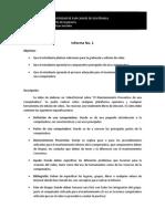 Informe No 1