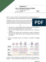 T09_-_Linfocito_T_ontogenia_e_a_resposta_imunologica_de_tipo_celular