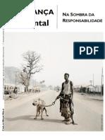 Segurança Ambiental - Na Sombra da Responsabilidade