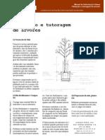 1215970293 Plant Tutoragem Arvores