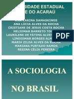 A Sociologia No Brasil Power