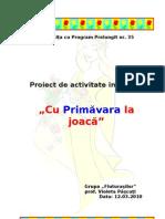 Proiect de Activitate Integrata Finala