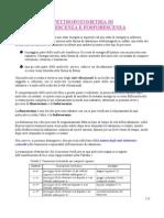 Spettrofotometria Fluorescenza