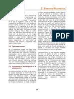 Manual Micorrizas Propagulos