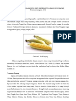 artikel-ppm-jagung2