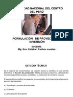 DIAPOSITIVA DEL  CURSO DE FORMULACIÒN DE PROYECTOS DE INVERSIÒN - UNCP - Quinta presentaciòn