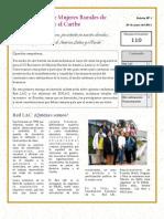 Boletín ENLAC Nº 01 - junio del 2011