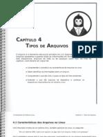 Fundamentos Do Sistema Linux - Cap IV